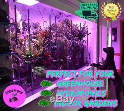600W Hydroponics LED Grow Lights Full Spectrum Indoor System Veg Flower Lamp