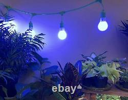 Miracle LED 602839 24ft Corded System Kit with 16 Blue Spectrum Grow Lights